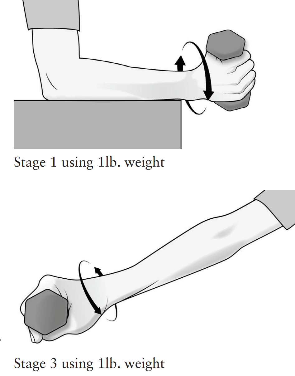 Forearm Supination & Pronation (Strengthening)