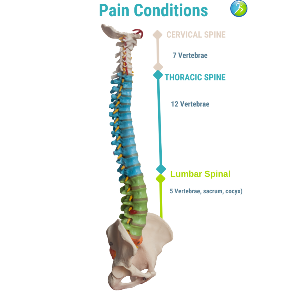 pain conditions